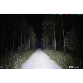 Lupine Blika X 4 - Linterna frontal - negro